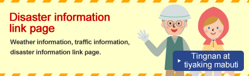 Disaster information link page